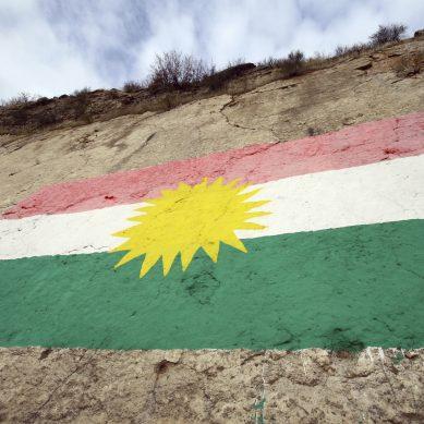 Little Kurdistan, USA